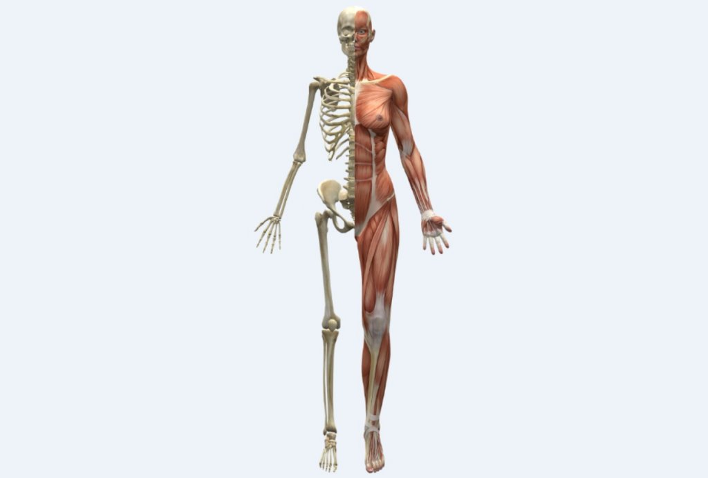 as a metastasis finder whole body mri wins some loses some
